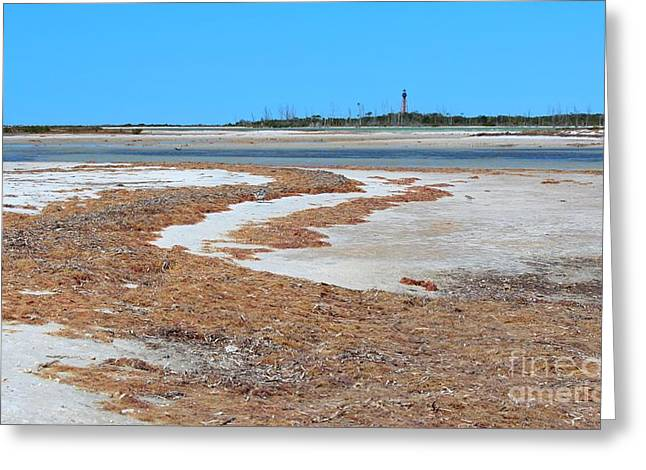Anclote Key Island Lighthouse Greeting Card