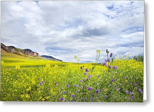 And A Heaven In A Wild Flower Greeting Card by Theresa Tahara