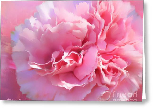 And A Pink Carnation Greeting Card