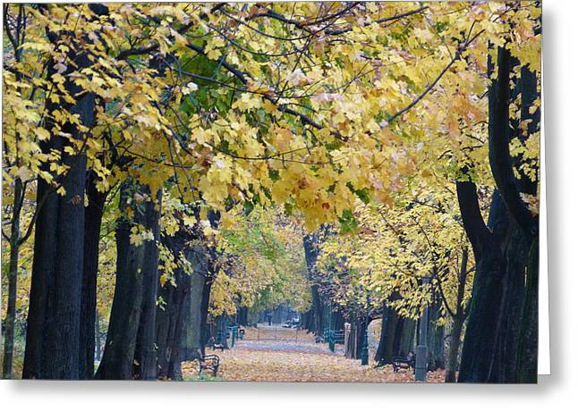 And Autumn Came Greeting Card by Janina  Suuronen