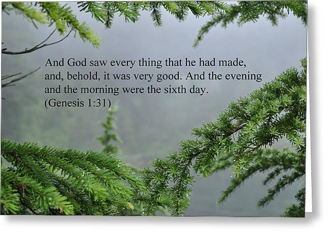 And God Saw Greeting Card by Tikvah's Hope
