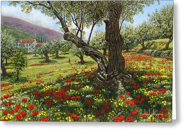Andalucian Olive Grove Greeting Card by Richard Harpum