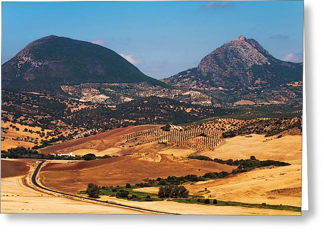 Andalusia. Spain Greeting Card by Jenny Rainbow