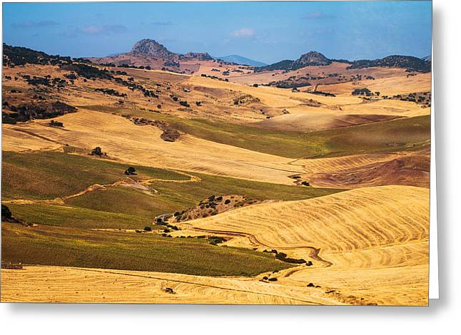 Andalusian Patchwork Fields I. Spain Greeting Card by Jenny Rainbow