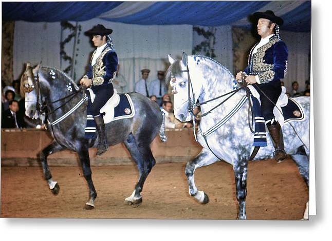 Andalusian Show Horses Greeting Card