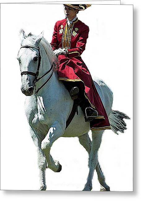 Andalusian Sidesaddle Horse  Greeting Card by Olde Time  Mercantile