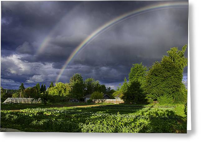 Andreas Pot Of Gold Greeting Card by Gary Neiss