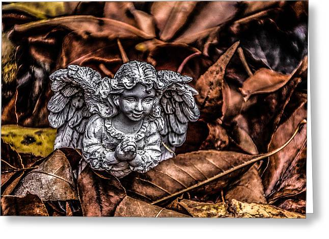 Angel Of Fall Greeting Card by Ray Congrove