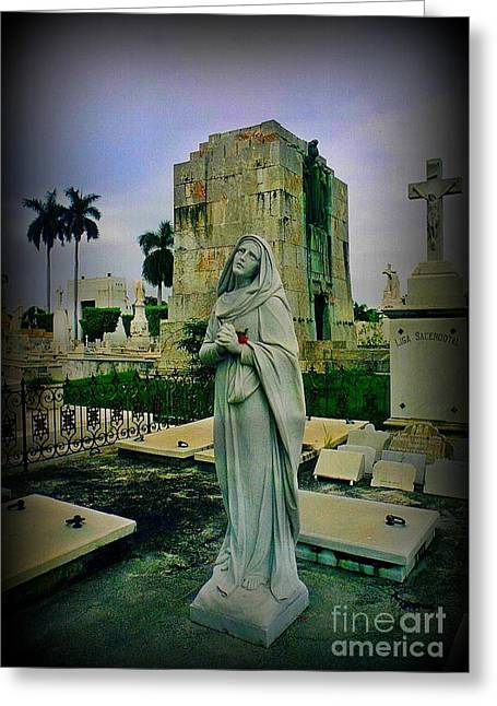 Angel With Rose Greeting Card by John Malone