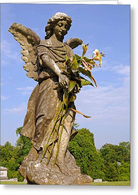 Greeting Card featuring the photograph Angel's Bouquet by Andy Crawford