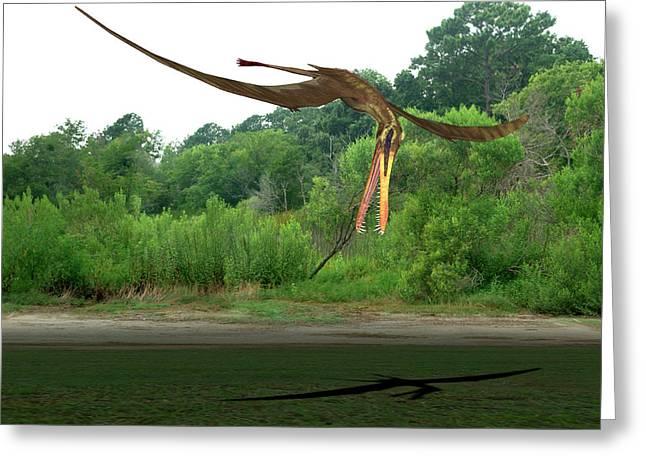 Anhanguera Pterosaur Greeting Card