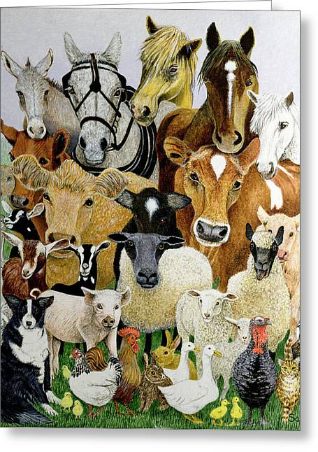Animal Allsorts Oil On Canvas Greeting Card
