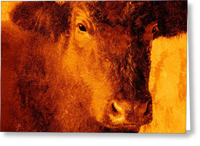 animals- cows- Brown Cow Greeting Card by Ann Powell