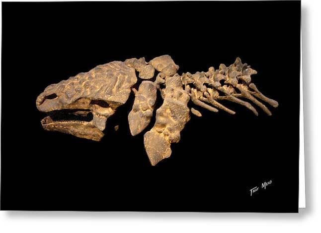 Ankilosaurus Skull Greeting Card by Tray Mead