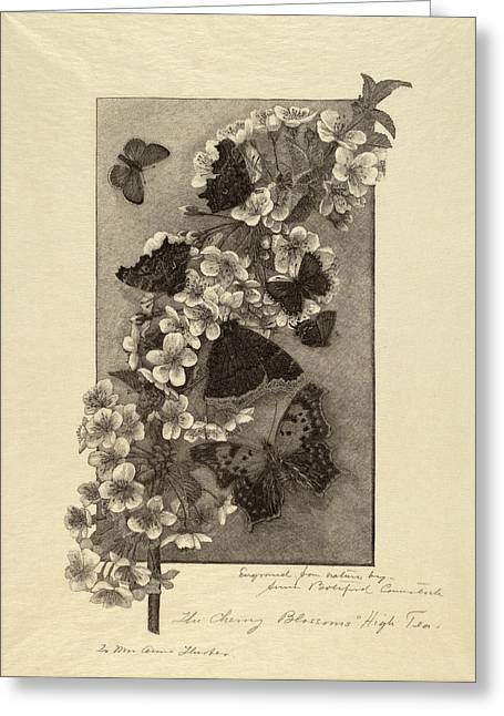 Anna Botsford Comstock, The Cherry Blossoms - High Tea Greeting Card