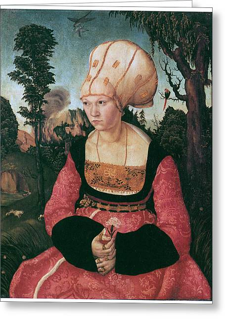 Anna Putsch First Wife Of Johannes Cuspinian Greeting Card by Lucas Cranach the Elder