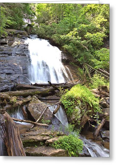Anna Ruby Falls - Georgia - 4 Greeting Card by Gordon Elwell