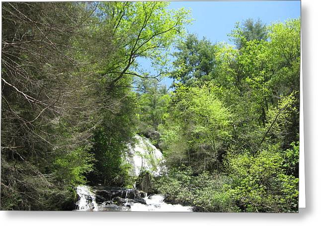 Anna Ruby Falls Helen Ga 01 Greeting Card by Brian Johnson
