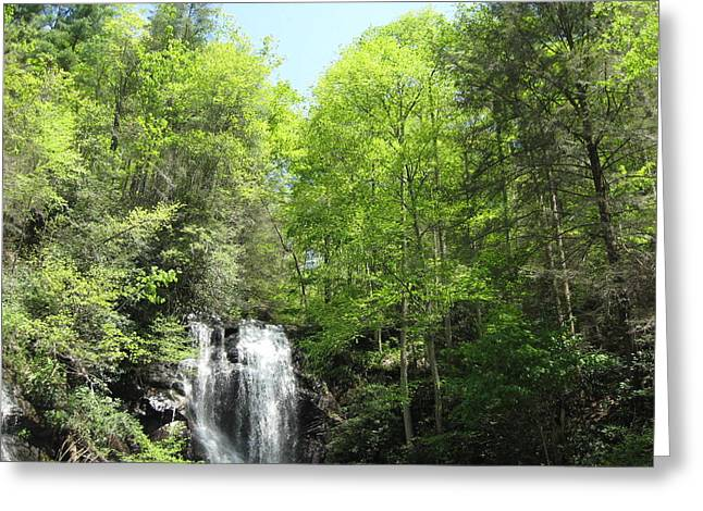 Anna Ruby Falls Helen Ga 02 Greeting Card by Brian Johnson