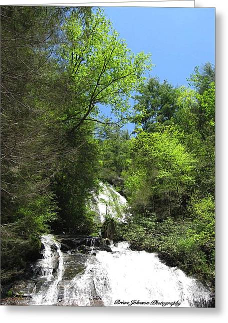 Anna Ruby Falls Helen Ga 05 Greeting Card by Brian Johnson