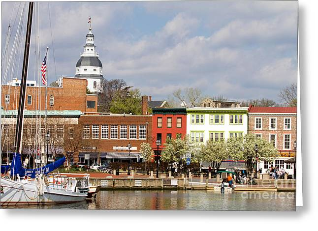 Annapolis Downtown Harbor Greeting Card