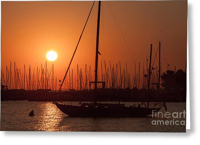 Annapolis Harbor Sunrise I Greeting Card by Clarence Holmes