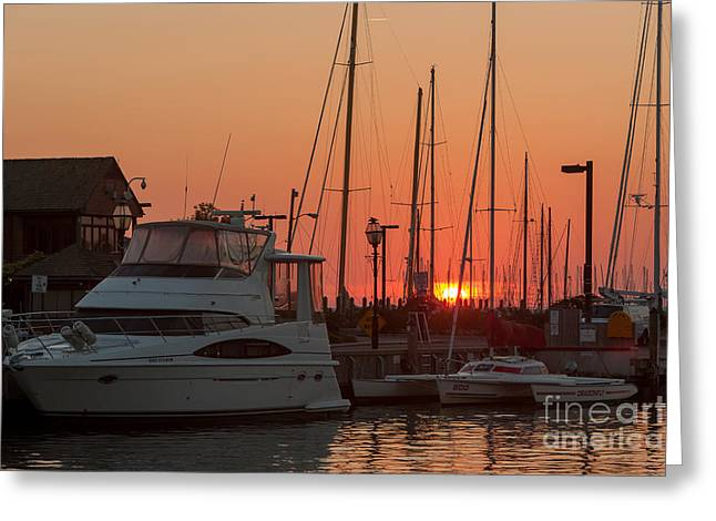 Annapolis Harbor Sunrise IIi Greeting Card by Clarence Holmes