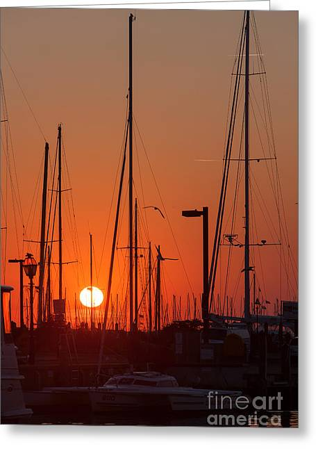 Annapolis Harbor Sunrise Iv Greeting Card by Clarence Holmes