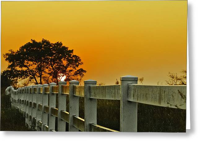 Another Tequila Sunrise Greeting Card by Robert Frederick