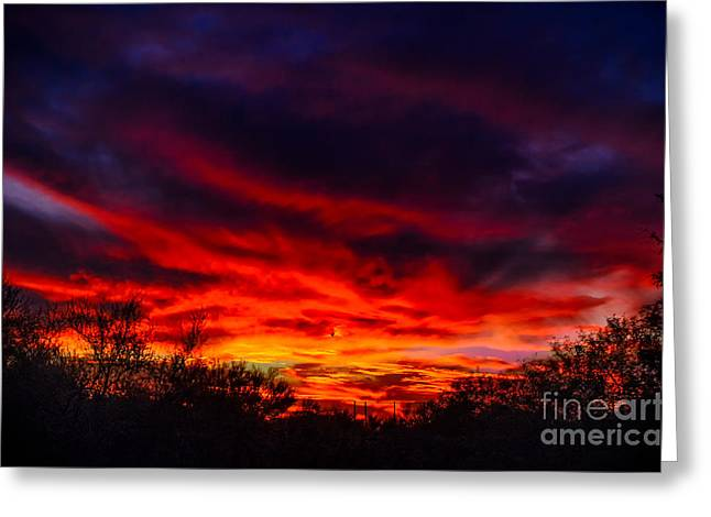Another Tucson Sunset Greeting Card