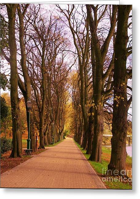 Another View Of The Avenue Of Limes Greeting Card