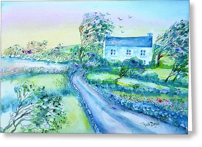 Another Windy Day On Cleare Island Ireland   Greeting Card by Trudi Doyle