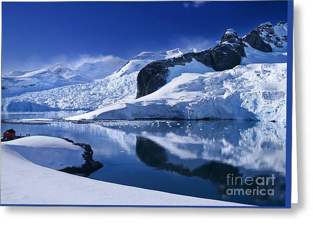 Antarctic Paradise Greeting Card