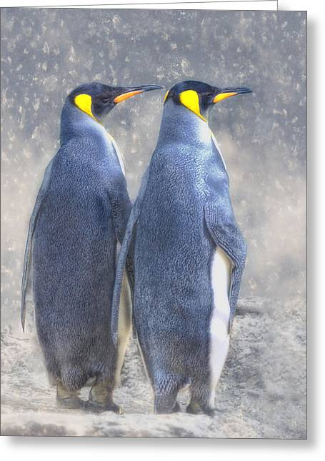 Antarctic To The Right? Greeting Card by Joachim G Pinkawa