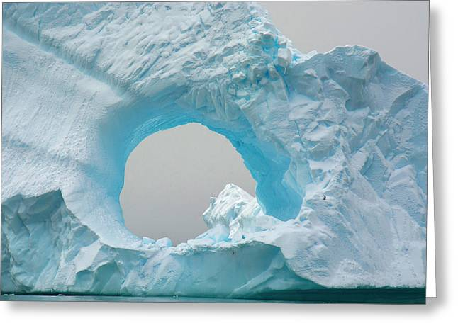 Antarctica Charlotte Bay Giant Iceberg Greeting Card