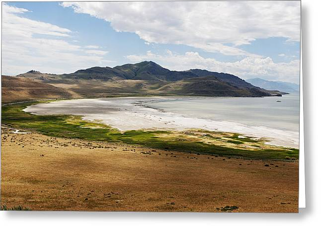 Greeting Card featuring the photograph Antelope Island by Belinda Greb
