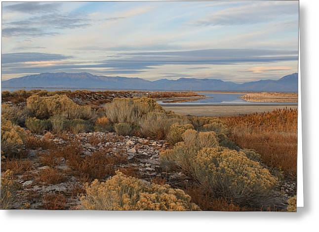 Antelope Island - Scenic View Greeting Card by Ely Arsha