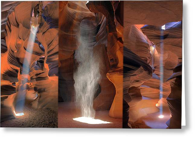 Antelope Triptych Greeting Card by Patrick Jacquet