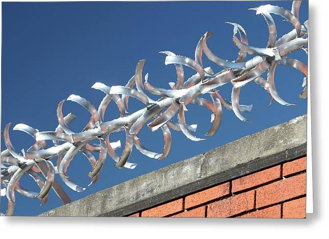 Anti-climb Barrier Greeting Card by Ashley Cooper