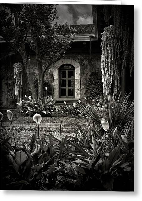 Antigua Garden Greeting Card by Tom Bell