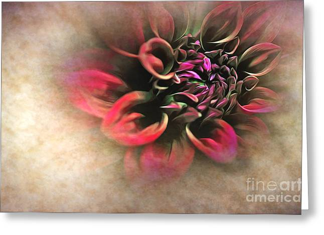 Antique Dahlia Greeting Card by Kaye Menner
