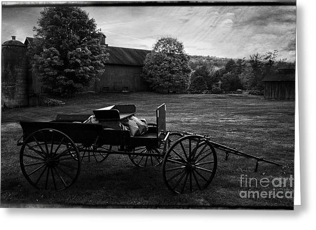 Antique Horse Drawn Wagon Greeting Card by Thomas Schoeller