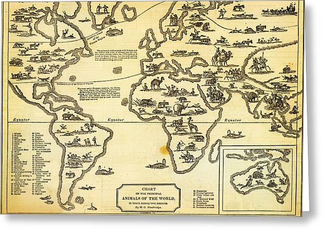 Antique Map Of  Chart Of Principal Animals Of The World 1831 Greeting Card by Celestial Images