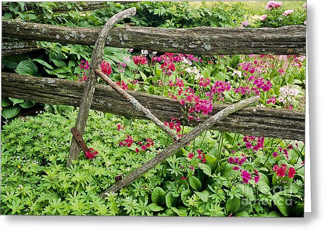 Greeting Card featuring the photograph Antique Plow Handles by Alan L Graham