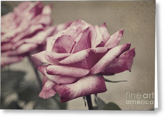 Antique Red Hybrid Tea Roses With Brocade Corners Greeting Card by Beverly Claire Kaiya