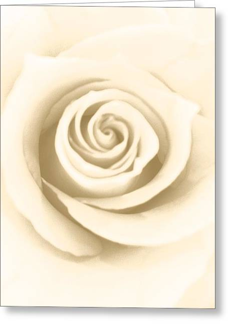 Antique Rose Greeting Card