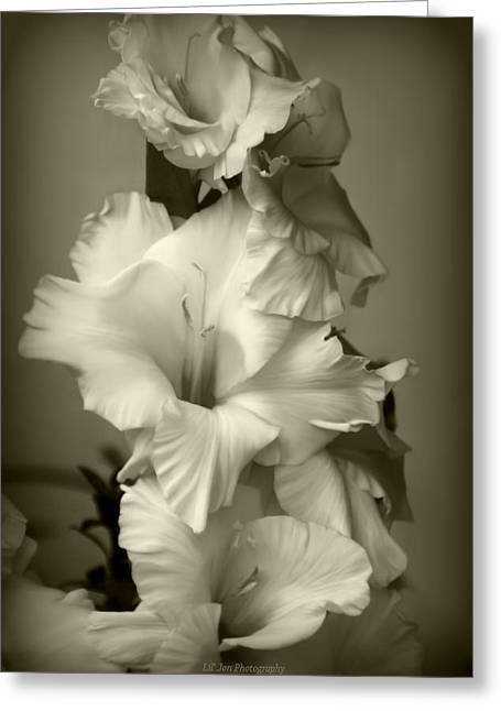 Antiqued Gladiolus Greeting Card