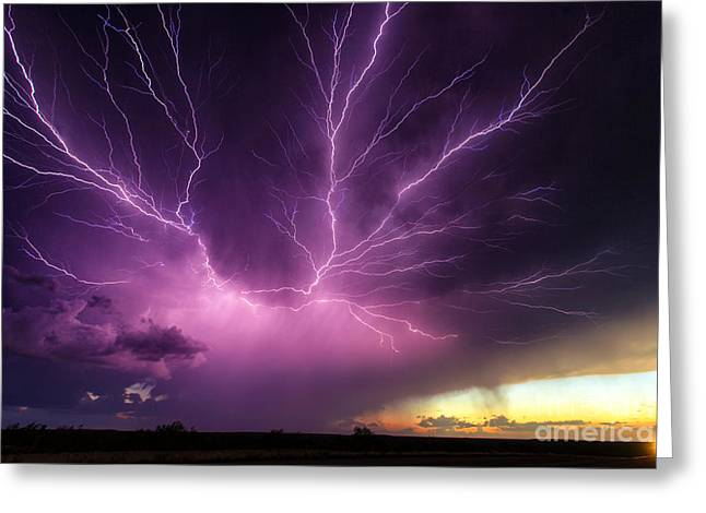 Anvil Crawler Lightning #1 Greeting Card by Marko Korosec