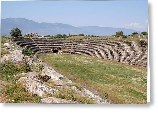 Aphrodisias Stadium From The East Greeting Card by Tracey Harrington-Simpson