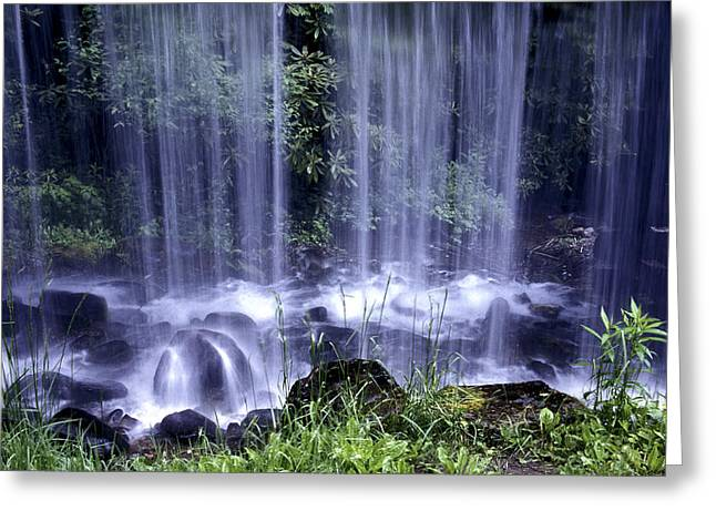 Appalachian Shower Greeting Card by Paul W Faust -  Impressions of Light